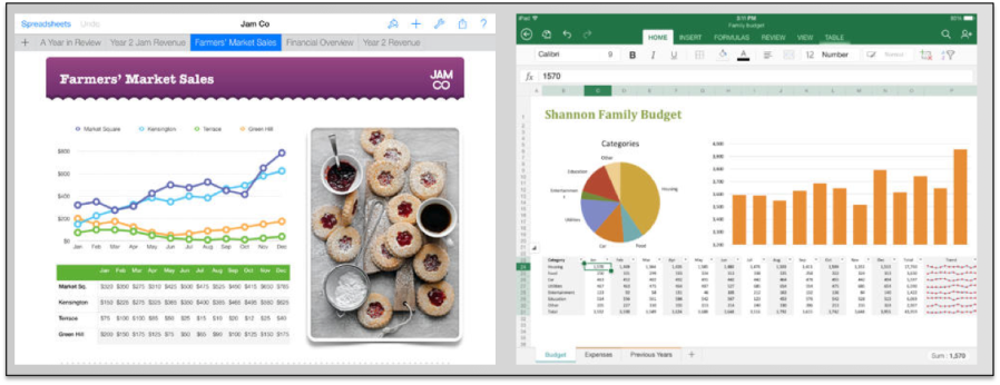 Excel and Numbers iPad